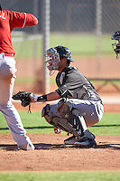 Chicago White Sox catcher Michael Hickman (18) during an Instructional League game against the Cincinnati Reds on October 11, 2016 at the Cincinnati Reds Player Development Complex in Goodyear, Arizona.  (Mike Janes/Four Seam Images)