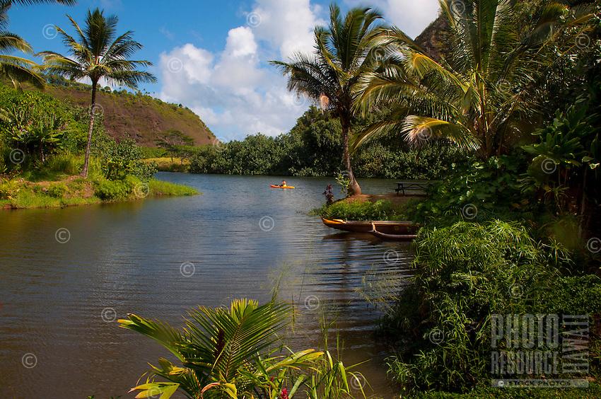 Kayaker on the Wailua River, Kauai.