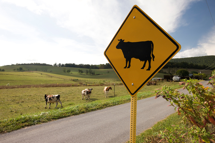 Farms and rural roads around Charlottesville, VA.  Credit Image: © Andrew Shurtleff