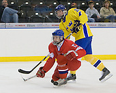 Jakub Jerabek  (Czech Republic - 15), Calle Järnkrok (Sweden - 25) - Sweden defeated the Czech Republic 4-2 at the Urban Plains Center in Fargo, North Dakota, on Saturday, April 18, 2009, in their final match of the 2009 World Under 18 Championship.