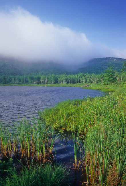 Clouds and mist roll in from the Alantic Ocean over Beaver Dam Pond, Acadia National Park, Hancock County, Maine