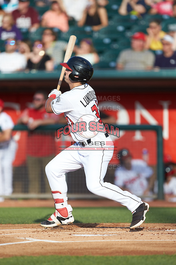 Brock Lundquist (33) of the Lansing Lugnuts follows through on his swing against the South Bend Cubs at Cooley Law School Stadium on June 15, 2018 in Lansing, Michigan. The Lugnuts defeated the Cubs 6-4.  (Brian Westerholt/Four Seam Images)