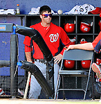 28 February 2011: Washington Nationals' outfielder Bryce Harper stands in the dugout during a Spring Training game against the New York Mets at Digital Domain Park in Port St. Lucie, Florida. The Nationals defeated the Mets 9-3 in Grapefruit League action. Mandatory Credit: Ed Wolfstein Photo