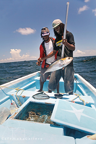 Two young fishermen catching a tuna, while fishing off the north coast Tobago