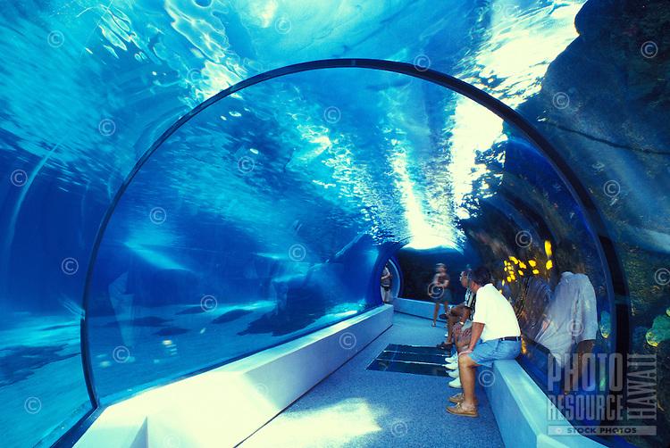Visitors view overhead aquarium at the Maui Ocean Center