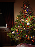 Decorated Christmas tree indoors at night with its lights on