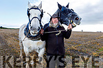 Jerry Dennihan from Tralee with his horses Larry and Elton John at the Ardfert Ploughing on Sunday