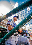 20 May 2018: Los Angeles Dodgers Manager Dave Roberts watches play from the steps of the dugout during a game against the Washington Nationals at Nationals Park in Washington, DC. The Dodgers defeated the Nationals 7-2, sweeping their 3-game series. Mandatory Credit: Ed Wolfstein Photo *** RAW (NEF) Image File Available ***