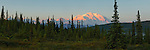 Sunrise warms the snow-capped peak of Denali, the Great One, in Denali National Park, Alaska.
