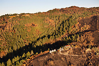 Mountain side and mountain top homes survive the Nuns Fire in the Mayacama Mountains, Sonoma County, California, northern California wildfires, 2017. In addition to the house in the foreground, there is another home on the ridge that survived despite the fire burning the trees directly below it.