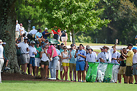 Webb Simpson (USA) hits his approach shot on 8 during round 1 of the 2019 Tour Championship, East Lake Golf Course, Atlanta, Georgia, USA. 8/22/2019.<br /> Picture Ken Murray / Golffile.ie<br /> <br /> All photo usage must carry mandatory copyright credit (© Golffile | Ken Murray)