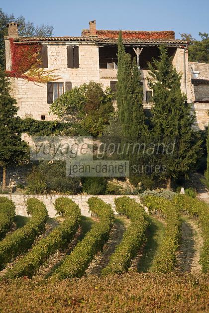 Europe/France/Midi-Pyrénées/81/Tarn/env de Mauriac: Maison et vignoble de Gaillac
