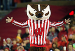 Wisconsin Badgers mascot Bucky Badger during an NCAA Big Ten Conference college football game against the Penn State Nittany Lions on November 26, 2011 in Madison, Wisconsin. The Badgers won 45-7. (Photo by David Stluka)