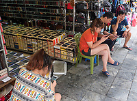 Cellphone craze; People and everyday life in the streets of Hanoi, Vietnam