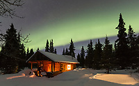Man watches the northern lights dance over a rustic log cabin nestled among spruce trees in the Alaska Range mountains.