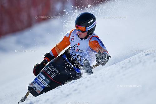 Jeroen Kampschreur (NED), <br /> MARCH 5, 2017 - Alpine Skiing :<br /> IPC Alpine World Cup Hakuba,<br /> Men's Giant Slalom <br /> Sitting LW12-2 <br /> at Hakuba Happo One, Nagano Japan.<br /> (Photo by AFLO SPORT)