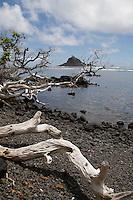 'Alau Island off the coast of Hana, Maui.