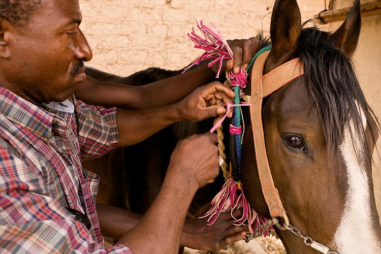 Moussa Atta, like all the horsemen of Djougou, repairs his horse's attire himself.<br />  <br /> Moussa Atta, comme tous les cavaliers de Djougou, r&eacute;pare lui-m&ecirc;me l'attirail de son cheval.