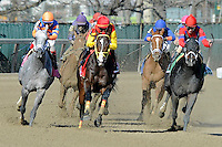 Trinniberg (no. 1), ridden by Willie Martinez and trained by Bisnath Parboo, wins the  52nd running of the grade 3 Bay Shore Stakes for three year olds on April 07, 2012 at Aqueduct Race Track in Ozone Park, New York.  (Bob Mayberger/Eclipse Sportswire)
