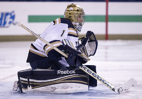 January 25, 2013:  Notre Dame goaltender Steven Summerhays (1) during NCAA Hockey game action between the Notre Dame Fighting Irish and the Ferris State Bulldogs at Compton Family Ice Arena in South Bend, Indiana.  Ferris State defeated Notre Dame 3-1.