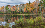 Autumn colors in the Chequamegon National Forest.