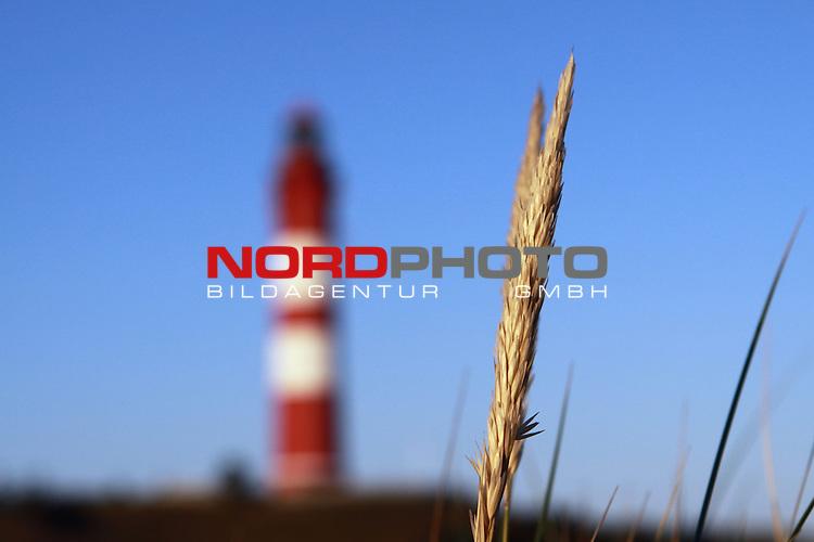 09.08.2013, Nordseeinsel Amrum, GER, im Bild Duenengras mit Leuchtturm im Hintergrund, Foto © nph / Kohring *** Local Caption ***