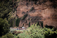 peloton<br /> <br /> Stage 8: Valls to Igualada (167km)<br /> La Vuelta 2019<br /> <br /> ©kramon