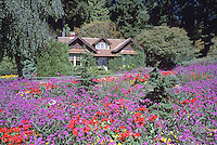 Stanley Park, Vancouver, BC, British Columbia, Canada - Flowers blooming in Flower Gardens, Spring / Summer