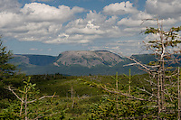 Gros morne Mountain from Lookout Trail Gros Morne National Park Newfoundland and Labrador