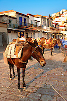 Pack Ponies on Hydra, Greek Saronic Islands