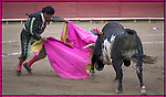 MATADOR AND BULL IN BULLFIGHT IN MEXICO