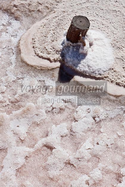 Europe/France/Provence-Alpes-Côte d'Azur/13/Bouches-du-Rhône/Env d'Arles/Salins-de-Giraud: Détail marais salant. Le groupe des Salins du Midi exploite des marais salants qui produisent environ un million de tonnes de chlorure de sodium par an.