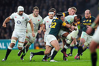 Courtney Lawes of England takes on the South Africa defence. Old Mutual Wealth Series International match between England and South Africa on November 12, 2016 at Twickenham Stadium in London, England. Photo by: Patrick Khachfe / Onside Images