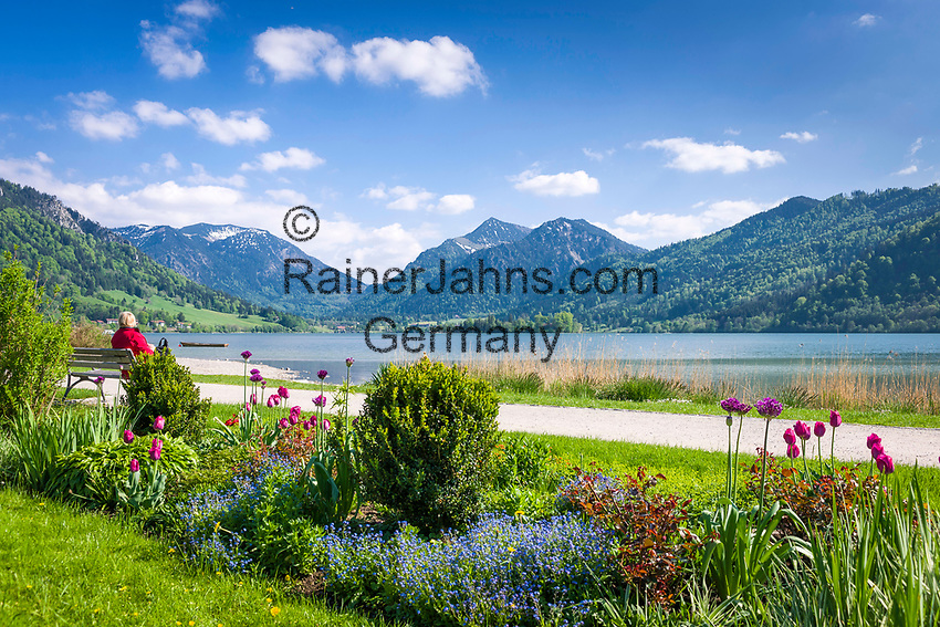 Deutschland, Bayern, Oberbayern, Markt Schliersee: Ort und gleichnamiger See, beliebtes Ausflugsziel zwischen dem Inntal und dem Tegernseer Tal, im Hintergrund Schlierseer Berge, Mangfallgebirge | Germany, Bavaria, Upper Bavaria, Schliersee: small town and popular climatic health resort at Lake Schliersee, at background Schliersee mountains