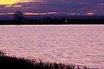 Sonnenuntergang über Darscho oder Warmsee, Illmitz, Nationalpark Neusiedlersee, Seewinkel, Bezirk Neusiedl am See, Burgenland, Austria, Österreich.
