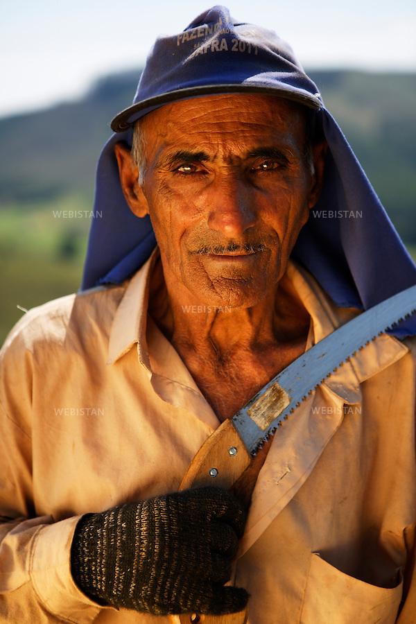 Bresil, etat Minas Gerais, Pocos de Caldas, fazenda (ferme) de cafe Recreio, 1er novembre 2012.<br /> <br /> La ferme Recreio est membre du programme Nespresso AAA. Portrait de Victor Salvino, ouvrier agricole, avec un couteau-scie : cet outil sert a elaguer les petites branches des arbres ou arbustes.<br /> Reportage les Chants de cafe_soul of coffee, realise sur les acteurs terrain du programme de developpement durable Triple AAA de Nespresso.<br /> <br /> Brazil, Minas Gerais, Pocos de Caldas, Fazenda (coffee farm) of Recreio, November 1, 2012 <br /> <br /> Recreio&rsquo;s farm is a member of the Nespresso AAA program. <br /> A portrait of Victor Salvino, a farm laborer, with a serrated knife: this tool is used to prune small branches on trees or shrubs. <br /> Assignment: les Chants de cafe_ Soul of Coffee, implemented on the fields of Nespresso&rsquo;s AAA Sustainable Quality Program.