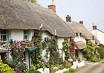 Row of pretty thatched whitewashed cottages, Porthoustock, Lizard Peninsula, Cornwall, England, UK
