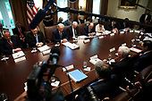United States President Donald J. Trump and Members of the Cabinet pray before starting a Cabinet Meeting in the Cabinet Room of the White House, on July 16, 2019 in Washington, DC.<br /> Credit: Oliver Contreras / Pool via CNP