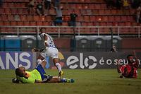 SÃO PAULO, SP 07.03.2019: SANTOS-AMERICA-RN - Derlis González comemora o gol. Santos e America-RN em jogo válido pela segunda fase da Copa do Brasil 2019, no estádio Pacaembu, zona oeste da capital. (Foto: Ale Frata/Codigo19)