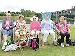 Thelma O'Brien, Vera Floody, Joan McEvoy, Bridie McIvor and Mairead Harvey enjoying the music on Donors Green. Photo:Colin Bell/pressphotos.ie