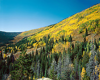 &quot;Piney River Valley&quot;<br />