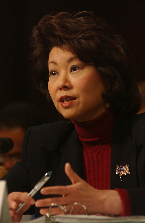 1/20/04.PROPOSED RULE ON OVERTIME PAY--Labor Secretary Elaine L. Chao testifies during the Labor, Health and Human Services and Education Subcommittee hearing on the Proposed Rule on Overtime Pay that has been put forth by the Department of Labor. .CONGRESSIONAL QUARTERLY PHOTO BY SCOTT J. FERRELL