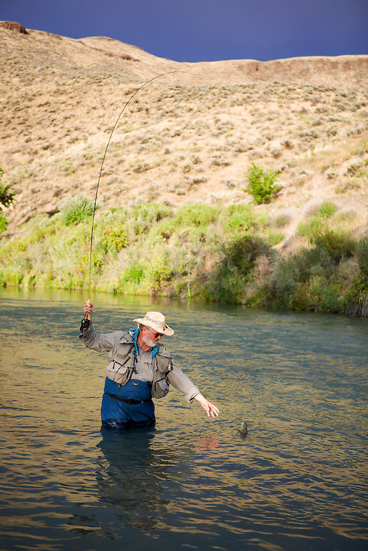 Fly fisherrman landing brown trout on Owyhee River. Oregon