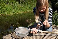 Kescherbau, Bau eines Keschers, Selbstgebastelter Kescher aus Küchensieb, Schlauchschellen, Stock, Drahtkescher