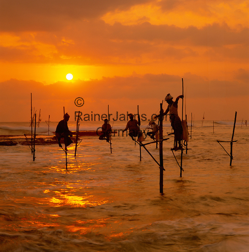 Sri Lanka, South coast near Midigama: stilt fishermen at sunset | Sri Lanka, Suedkueste bei Midigama: Stelzenfischer im Sonnenuntergang