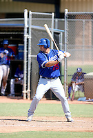 Steven Caseres / Los Angeles Dodgers 2008 Instructional League..Photo by:  Bill Mitchell/Four Seam Images