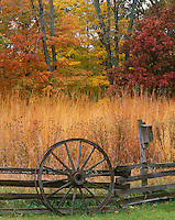 Bureau County, IL: Split Rail fence and tallgrass prairie at the edge of an oak, maple hardwood forest in fall color