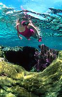 Snorkeler, Florida Keys National Marine Sanctuary, Key Largo