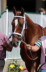 May23, 2015  Golden Soul (Robby Albarado) finished third in the Louisville Handicap at Churchill Downs. Owner Charles E. Fipke, trainer Dallas Stewart. ©Mary M. Meek/ESW/CSM