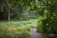 Gravel path leading around California meadow garden room, David Fross